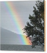 Rainbow Over Odell Wood Print