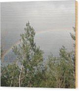 Rainbow Past The Treeline Wood Print