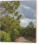 Rainbow Path Wood Print
