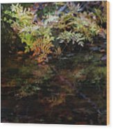 Rainbow Pickle Creek Reflections 6272 H_3 Wood Print
