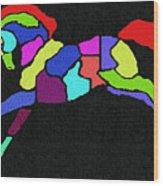 Rainbow Pony Wood Print