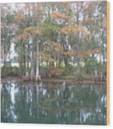 Rainbow River and  distant pasture Wood Print