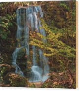 Rainbow Springs Waterfall Wood Print