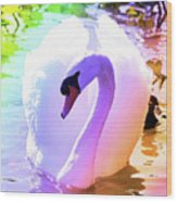 Rainbow Swan Wood Print