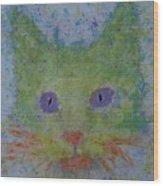 Rainbow Tomcat Wood Print