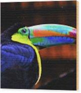 Rainbow Toucan Wood Print