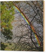 Rainbow Tree Wood Print