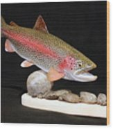 Rainbow Trout On The Rocks Wood Print by Eric Knowlton