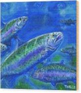 Rainbow Trout Swimming Wood Print