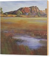 Rainbow Valley  Australia Wood Print