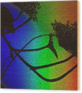 Rainbows And Stary Clouds Wood Print