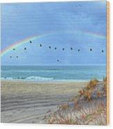 Rainbows And Wings I Wood Print by Dan Carmichael