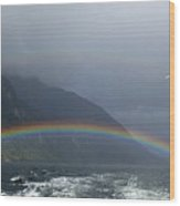 Rainbows Wood Print