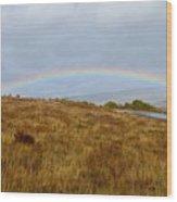 Raindow Over Gold Wood Print