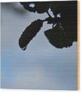Raindrop Silhouette Wood Print