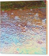 Raindrops 6877 Wood Print