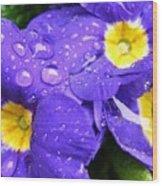 Raindrops On Blue Flowers Wood Print