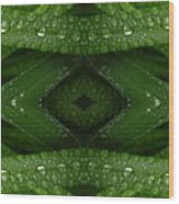 Raindrops On Green Leaves Collage Wood Print