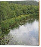 Raindrops On The Little Spokane Wood Print