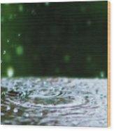 Raindrops Rejuvinate Wood Print
