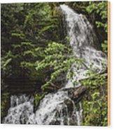 Rainforest Falls Wood Print