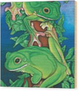Rainforest Rendezvous Wood Print