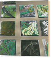 Rainforest Tile Prints Wood Print