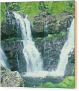 Rainforest Waterfalls Wood Print