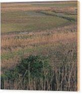 Rainham Marshes Wood Print