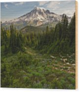 Rainier And Majestic Meadows Of Wildflowers Wood Print