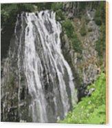 Rainier Falls Wood Print