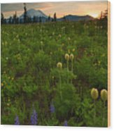 Rainier Wildflower Light Wood Print
