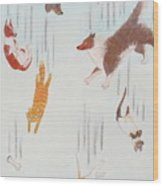 Raining Cats And Dogs Wood Print