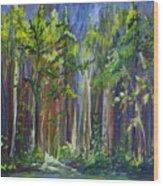 Rainy Day At Nutimik Lake Wood Print