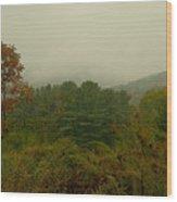 Rainy Day In White Creek Wood Print