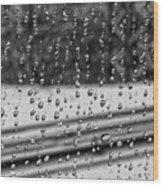 Rainy Day On The Train Wood Print