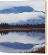 Rainy Day Reflections Wood Print