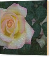 Rainy Day Rose Wood Print