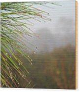 Rainy Days And Mondays Wood Print