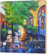 Rainy Dutch Alley Wood Print