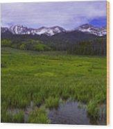 Rainy Season Wood Print