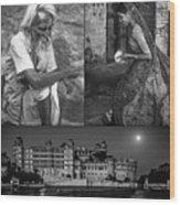 Rajasthan Collage Bw Wood Print