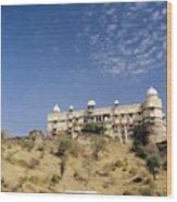 Rajasthan Near Bari Sadri  Wood Print