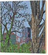 Raleigh - View From Chavis Park Wood Print