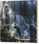 Ramona Falls 4 Wood Print