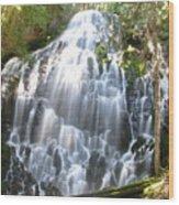 Ramona Falls-ii Softer Wood Print