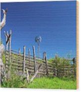 Ranch At Click Gap Wood Print