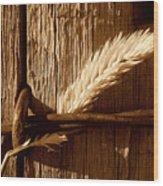 Ranch Life.. Wood Print by Al  Swasey