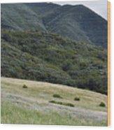 Rancho Sierra Vista Satwiwa Mountains Portrait Wood Print