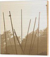 Random Masts Wood Print